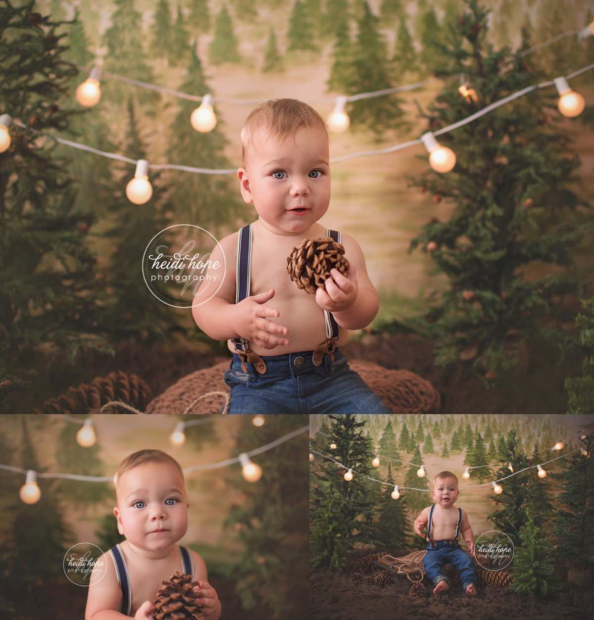 heidi hope backdrop rustic pine tree farm mini session holiday christmas camping 7