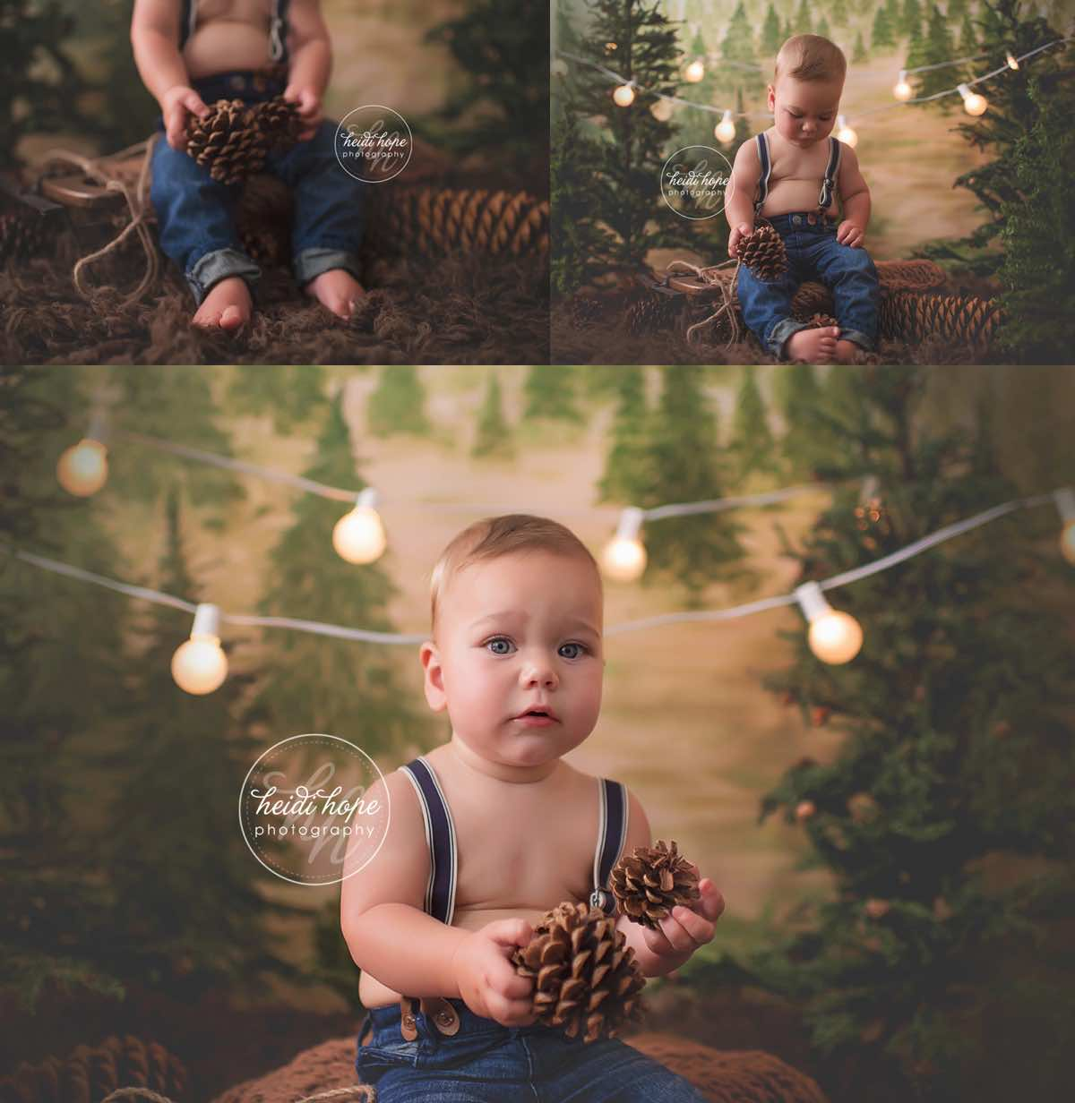 heidi hope backdrop rustic pine tree farm mini session holiday christmas camping 8